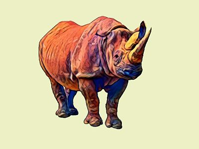 Facts about the Rhinoceros - One Zoo Tree